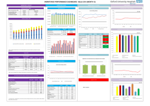 WORKFORCE PERFORMANCE DASHBOARD - March 2014 (MONTH 12)