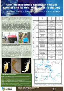 Titel poster Alien macrobenthic species in the Sea