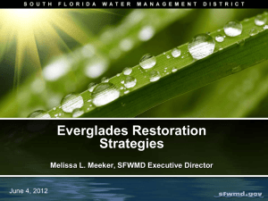 Everglades Restoration Strategies  Melissa L. Meeker, SFWMD Executive Director
