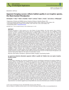Apparent foraging success reflects habitat quality in an irruptive species,