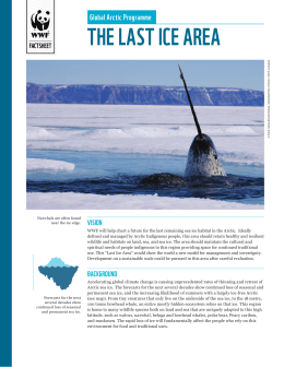 tHE LaSt icE arEa global arctic programme ViSion