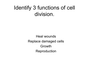 Identify 3 functions of cell division. Heal wounds Replace damaged cells
