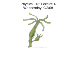 Physics 313: Lecture 4 Wednesday, 9/3/08