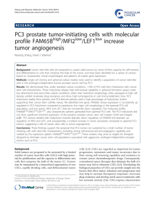 PC3 prostate tumor-initiating cells with molecular profile FAM65B /MFI2 /LEF1