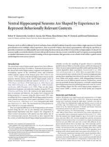 Ventral Hippocampal Neurons Are Shaped by Experience to