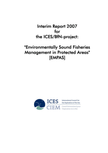 Interim Report 2007 for the ICES/BfN-project: