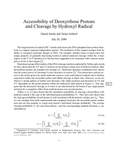 Accessibility of Deoxyribose Protons and Cleavage by Hydroxyl Radical July 26, 2000