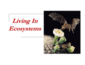 Living In Ecosystems