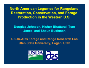 North American Legumes for Rangeland Restoration, Conservation, and Forage