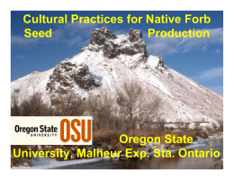Cultural Practices for Native Forb Oregon State University, Malheur Exp. Sta. Ontario