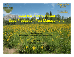 Great Basin Native Plant Seed Production Pest Management  Bob Hammon