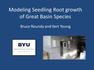 Modeling Seedling Root growth of Great Basin Species