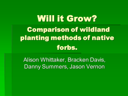 Will it Grow? Comparison of wildland planting methods of native forbs.