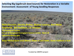 Selecting Big Sagebrush Seed Sources for Restoration in a Variable
