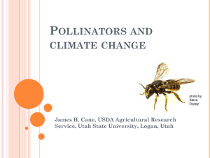 P OLLINATORS AND CLIMATE CHANGE James H. Cane, USDA Agricultural Research