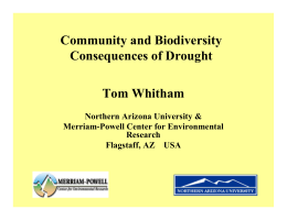 Community and Biodiversity Consequences of Drought Tom Whitham Northern Arizona University &