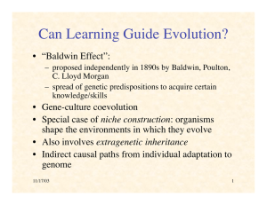 "Can Learning Guide Evolution? • ""Baldwin Effect"":"