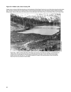 Figure 24—Hidden Lake, Union County, OR.