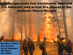 Landscape-scale fuel treatments, modeled northern Sierra Nevada