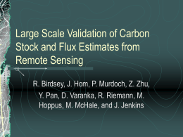 Large Scale Validation of Carbon Stock and Flux Estimates from Remote Sensing