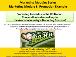 Marketing Modules Series Marketing Module 8: Promotion Example