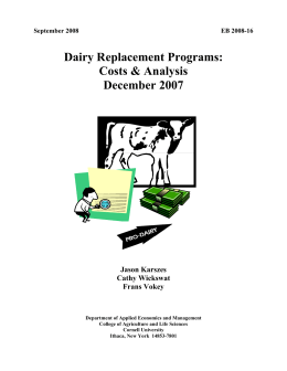 Dairy Replacement Programs: Costs & Analysis December 2007