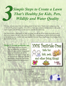 3 Simple Steps to Create a Lawn That's Healthy for Kids, Pets,