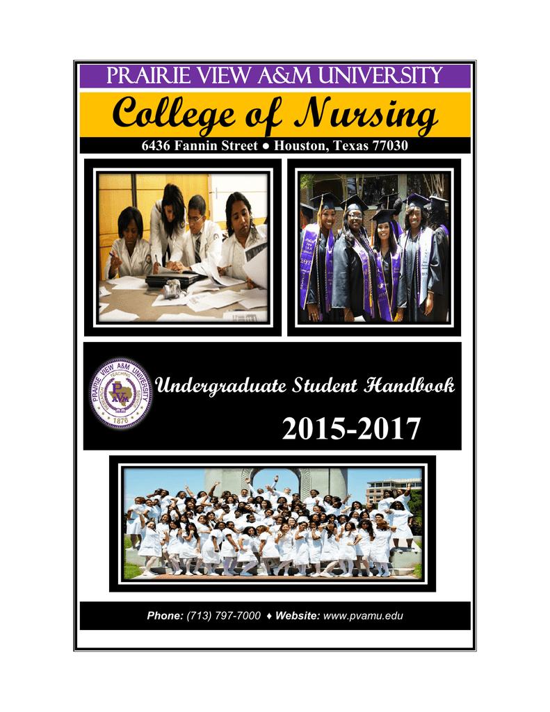Prairie View Nursing >> College Of Nursing 2015 2017 Prairie View A M University