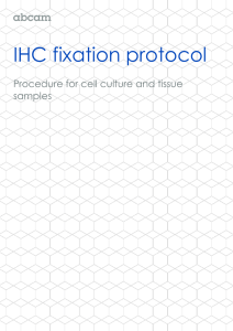 IHC fixation protocol  Procedure for cell culture and tissue samples