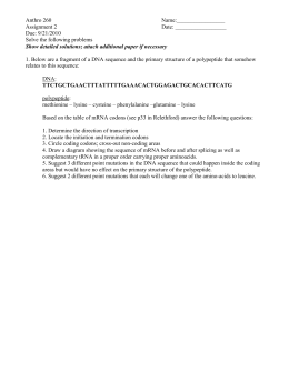 Amy tan essay mother tongue pdf amy
