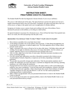 INSTRUCTION SHEET: FRACTURED COCCYX (TAILBONE) University of North Carolina Wilmington