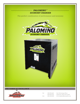 palomino  economy charger The perfect combination of performance and economy.