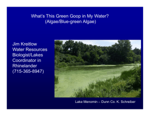 What's This Green Goop in My Water? (Algae/Blue-green Algae) Jim Kreitlow Water Resources