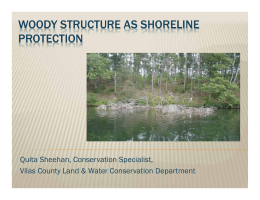 WOODY STRUCTURE AS SHORELINE PROTECTION Quita Sheehan, Conservation Specialist,