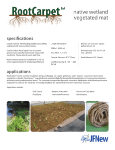 native wetland vegetated mat specifications