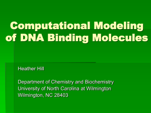 Computational Modeling of DNA Binding Molecules