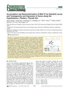 fish Larvae Accumulation and Biotransformation of BDE-47 by Zebra