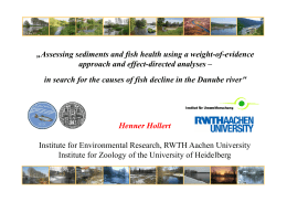 Assessing sediments and fish health using a weight-of-evidence