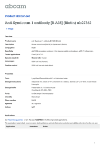Anti-Syndecan-1 antibody [B-A38] (Biotin) ab27362 Product datasheet 1 Image Overview