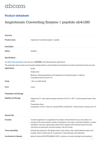 Angiotensin Converting Enzyme 1 peptide ab41280 Product datasheet Overview Product name