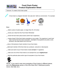 Food Chain Poster Product Explanation Sheet