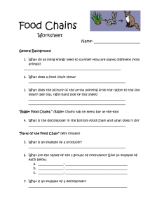 Food Chains  Worksheet Name: _________________________