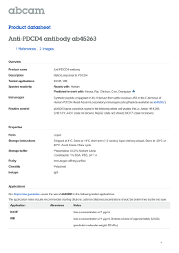 Anti-PDCD4 antibody ab45263 Product datasheet 1 References 2 Images