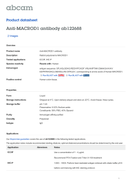 Anti-MACROD1 antibody ab122688 Product datasheet 2 Images Overview