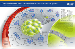 Cross-talk between tumor microenvironment and the immune system