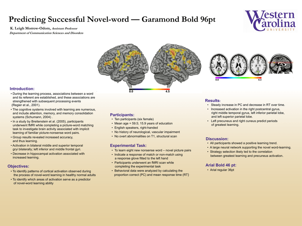 Predicting Successful Novel-word — Garamond Bold 96pt , Introduction