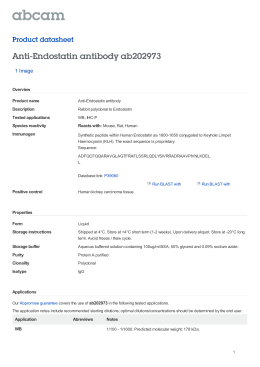 Anti-Endostatin antibody ab202973 Product datasheet 1 Image Overview