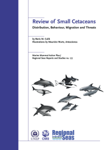 Review of    Small Cetaceans  by Boris M. Culik