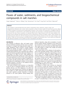 Fluxes of water, sediments, and biogeochemical compounds in salt marshes Open Access