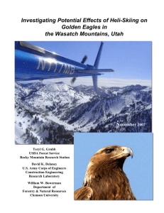 Investigating Potential Effects of Heli-Skiing on Golden Eagles in November